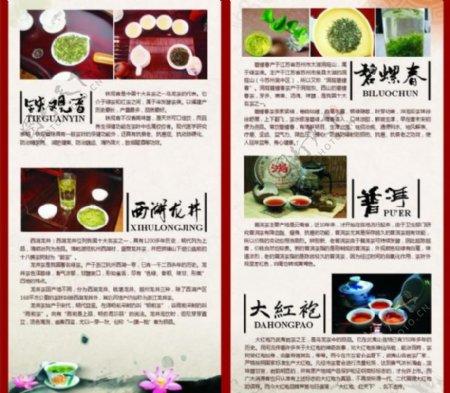 茶叶介绍图片