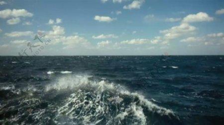 实用高清大海影视