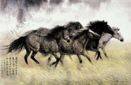 万马奔腾动物画集书法印章背景风景草原野草野马文化艺术绘画书法72DPI