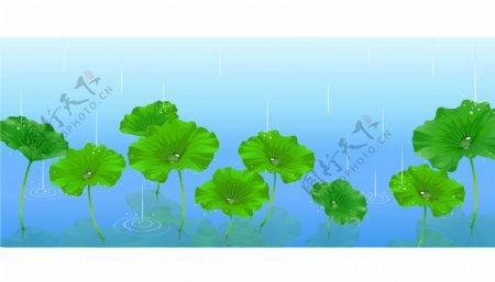 雨中的荷叶矢量素材