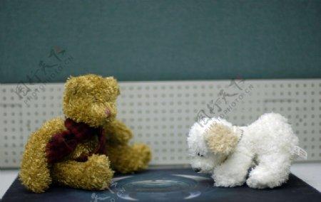 小熊小狗1图片