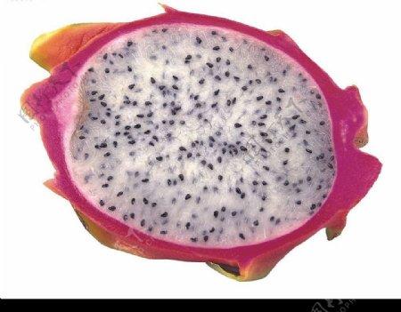 仙蜜果图片