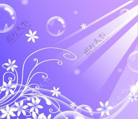 紫色花边背景图片