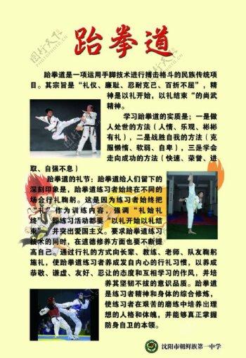 学校跆拳道室展板图片