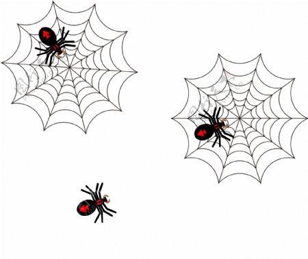 万圣节蜘蛛图片