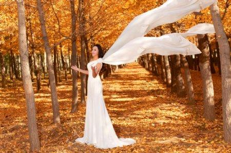 树林中女明星偶像图片