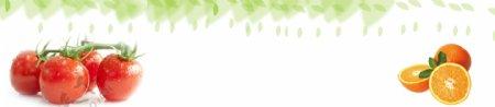 蔬菜网站背景banner