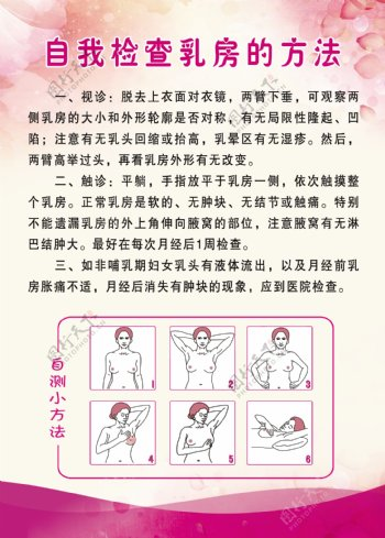 自我检查乳房的方法