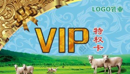 乳制品名片VIP卡片