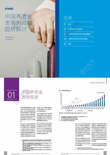 2016年中国养老金发展的战略趋势探讨分析报告文档