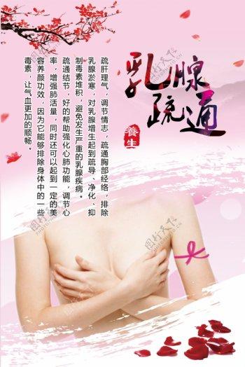乳腺疏通展板