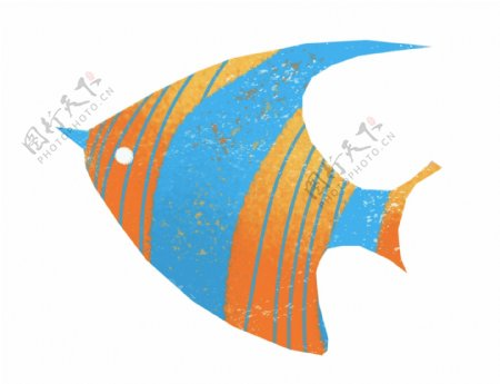 美丽的鱼儿