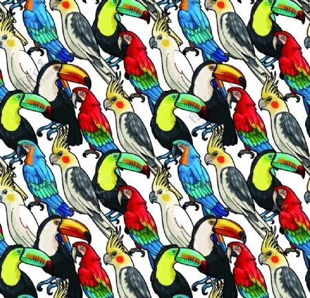 手绘鸟动物印花数码热