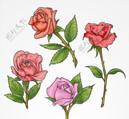 彩色单枝玫瑰花矢量素材