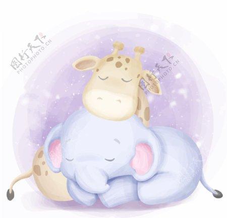 睡觉的大象