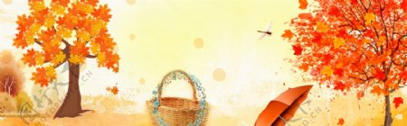 竹篮雨伞枫树