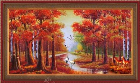 火红枫树林风景画枫树林