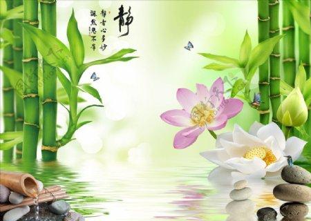 富贵竹荷花鹅卵石背景墙图片