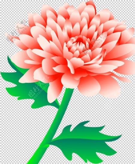花素材图片