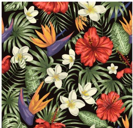 热带植物花卉背景底纹图片