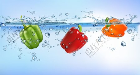 辣椒水花矢量图图片