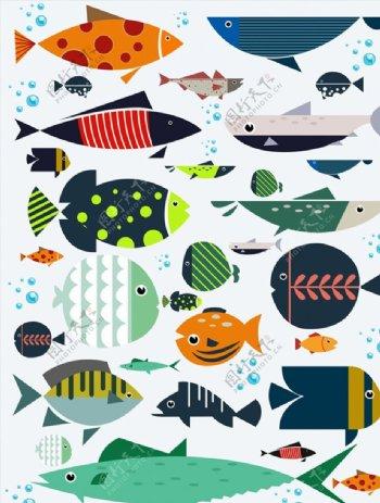 花纹海底鱼类图片