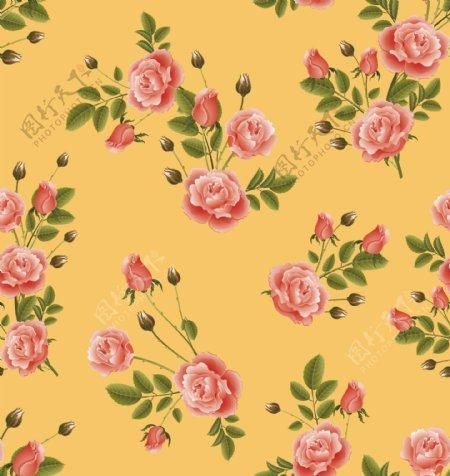 玫瑰月季碎花图片