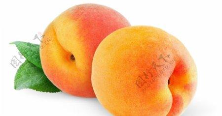 两个桃子图片