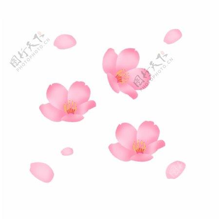 手绘春天飘扬花瓣花朵桃花樱花卡图片