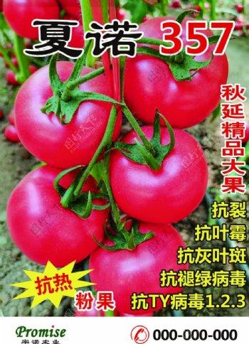 宇诺农业海报西葫芦图片