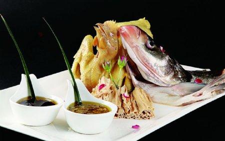 鱼嘴燕鸡图片