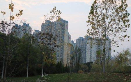 林中高楼图片