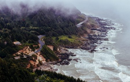 海滨自然风景山岩石针叶图片
