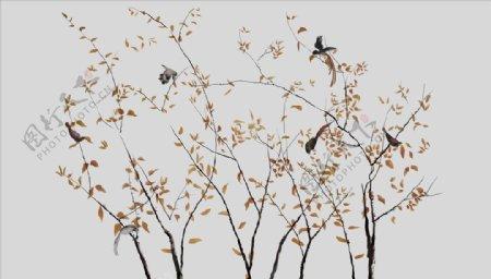 花鸟画小鸟背景墙图片