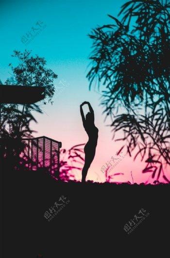 落日树林下瑜伽女人图片