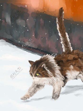 雪天来自故宫的猫图片