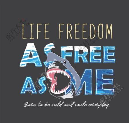 鲨鱼海洋字母各种鱼图片