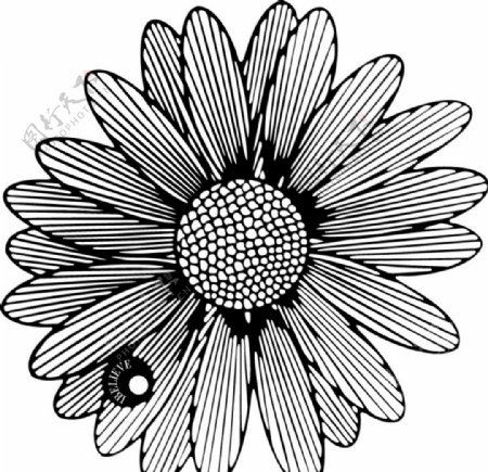 金属书签太阳花图片