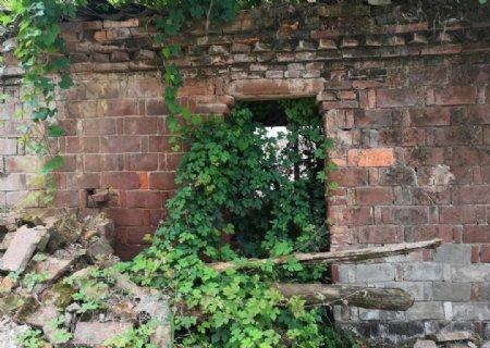 倒了墙的老房子图片