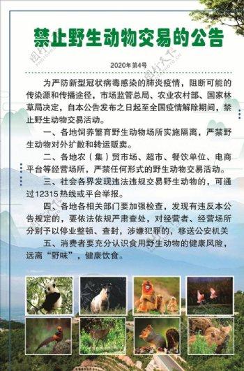 禁止野生动物交易通告图片