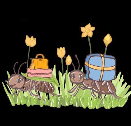 卡通蚂蚁插画图片