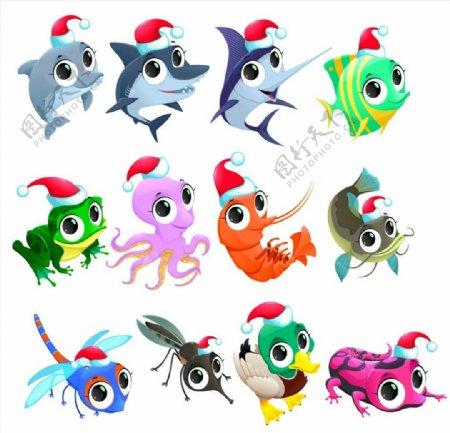 圣诞节海洋生物图片
