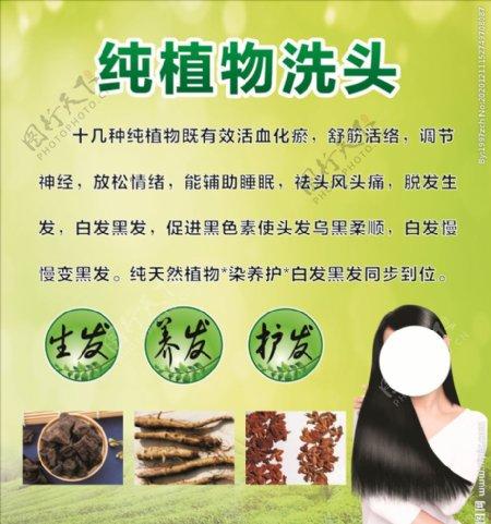 纯植物洗头图片