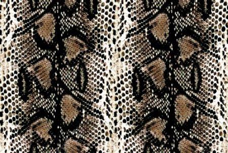 蛇纹皮图片