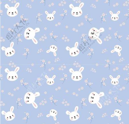 兔子花图片