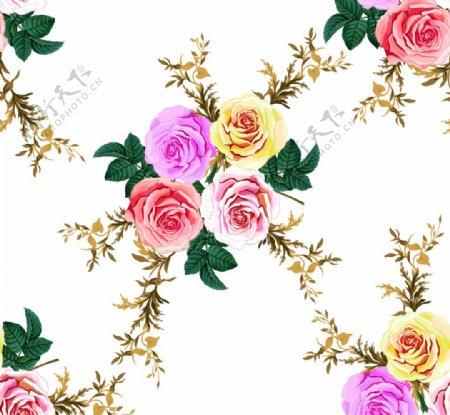 玫瑰大花图片