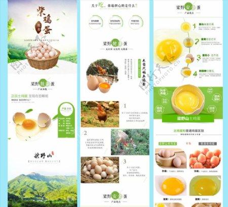 散养柴鸡蛋详情图图片