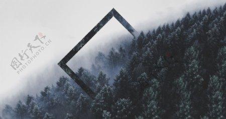 森林树木几何抽象背景图片