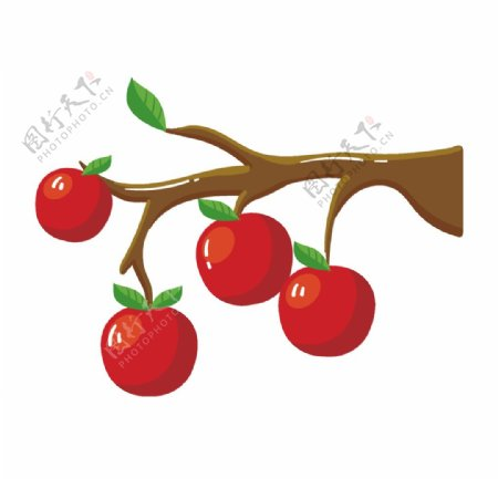 卡通手绘树枝上的苹果图片