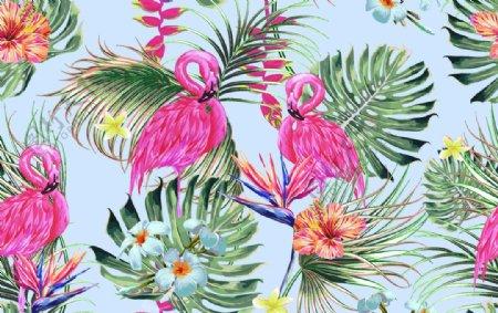 大牌热带花图片